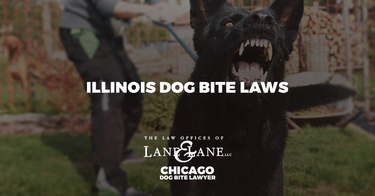Illinois Dog Bite Laws